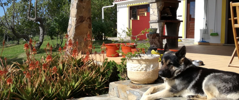Our Quinta 7